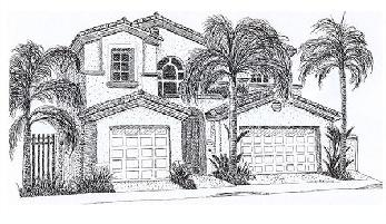 California pen and ink drawing